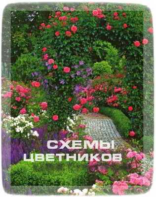 Cхемы красивых цветников
