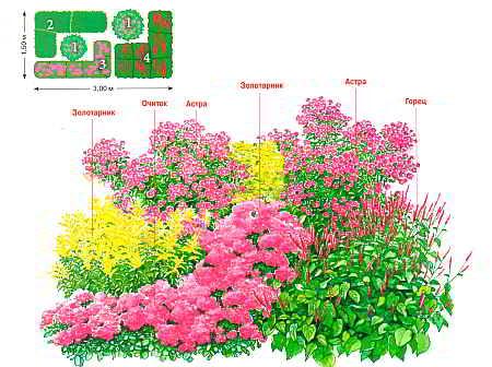 Осенний цветник схема