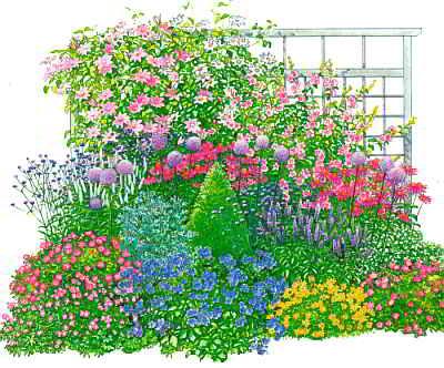 Цветник с кустарниками, схема