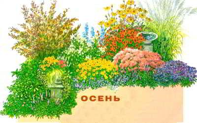цветник непрерывного цветения с весны до осени